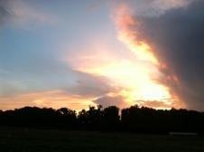 Sundown over the garden