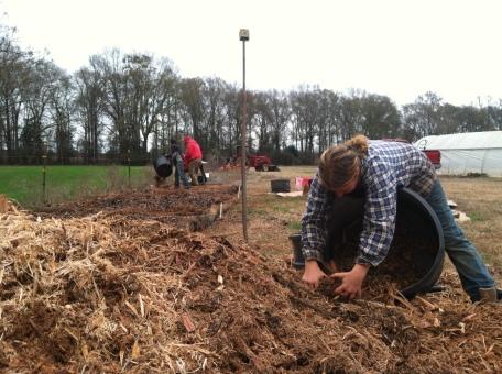 Lori building myco-beds