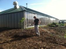 Reid in his new Kitchen Garden