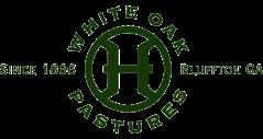 WOP logo early 2000s